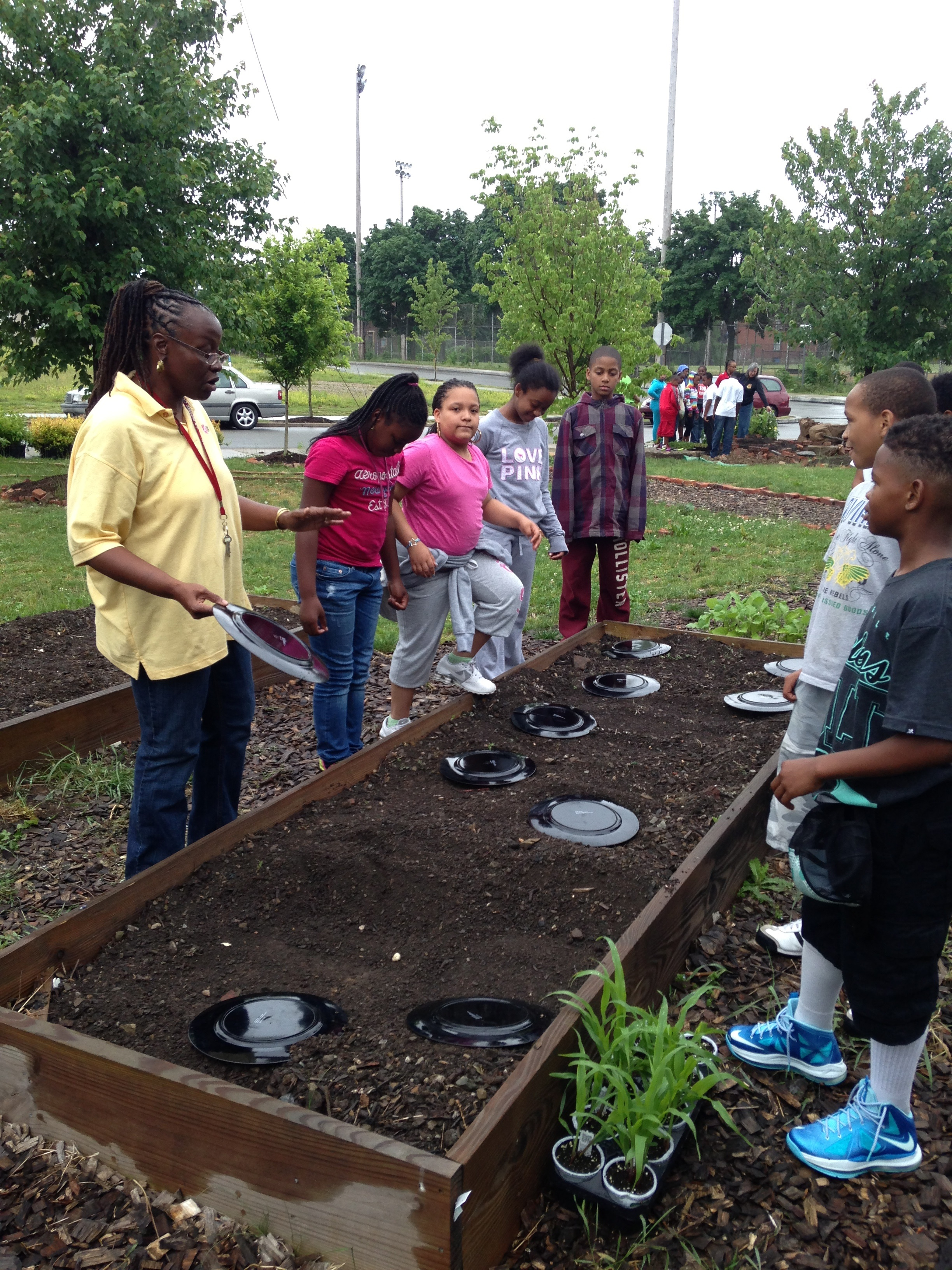 Manchester schools come together to plant community garden ...