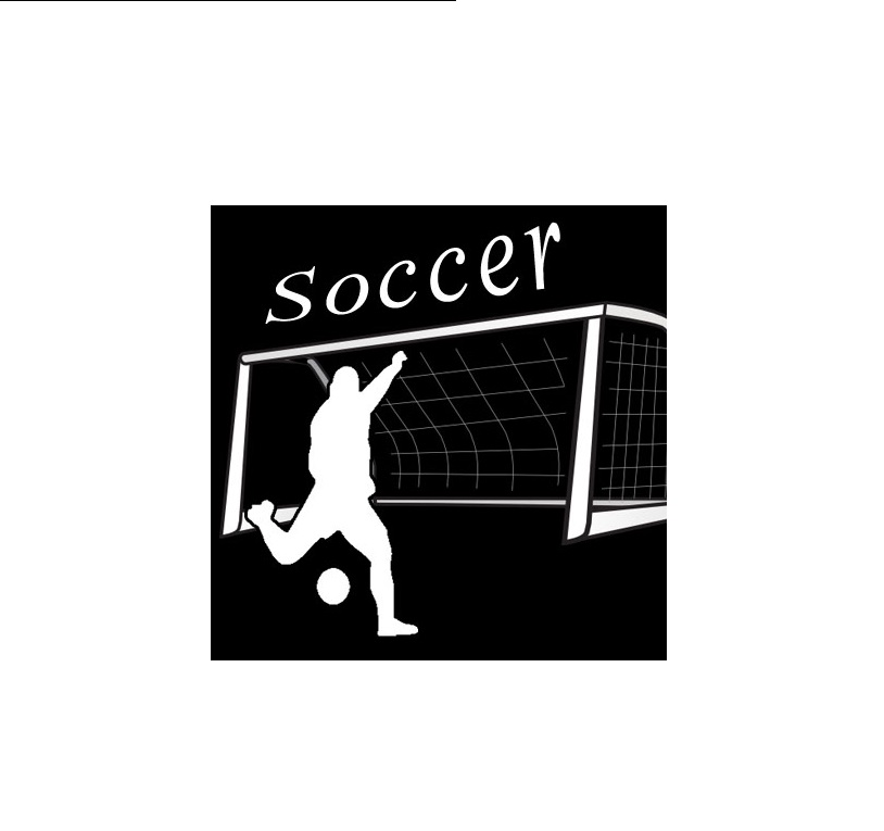 Pittsburgh Allegheny 6-8 Boys' Soccer Schedule