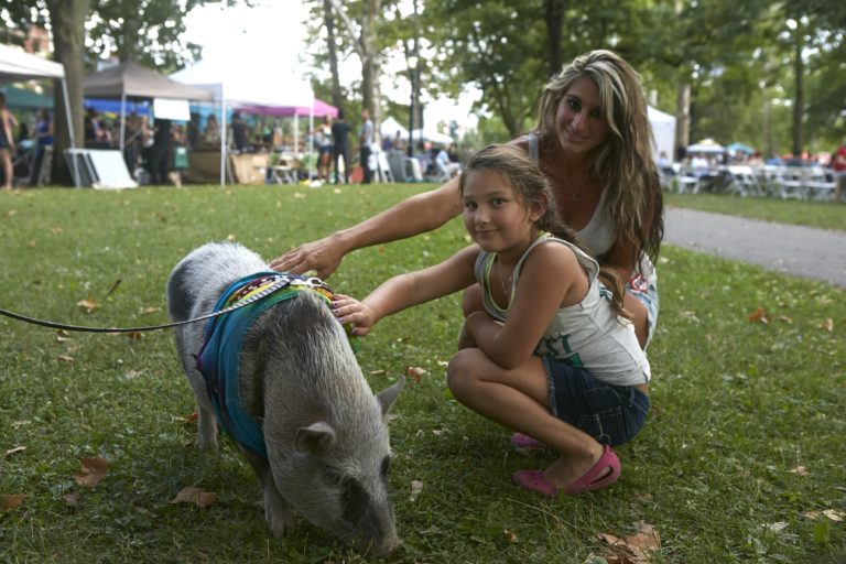 VegFest returns to Pittsburgh in August