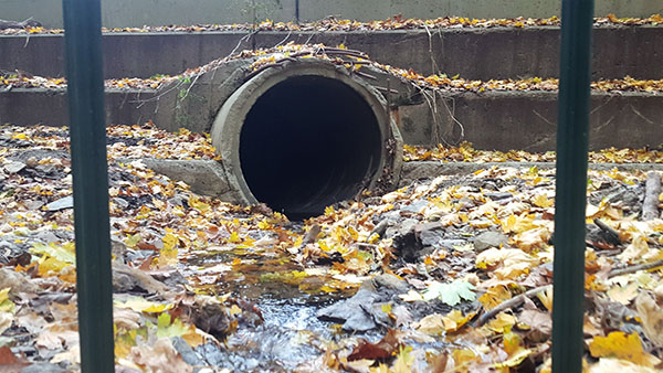 PWSA hosts meeting to address stormwater management in Riverview Park
