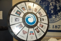 """The """"Wheel of Pain"""""""